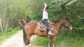 "L'équilibre du cavalier : ""Recule ta jambe !"""
