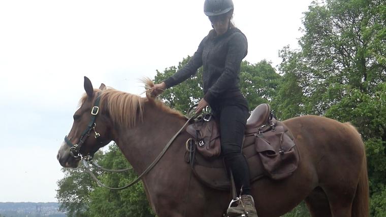 S'initier à l'équitation des grands espaces