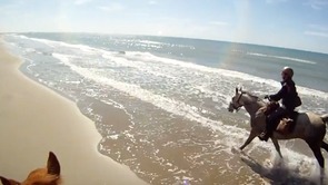 Camargue by gopro