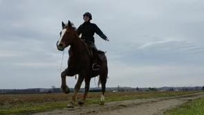 Weekend Equitation des Grands Espaces