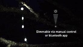 lumière en guirlande