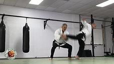 Side Kick Twisting LF