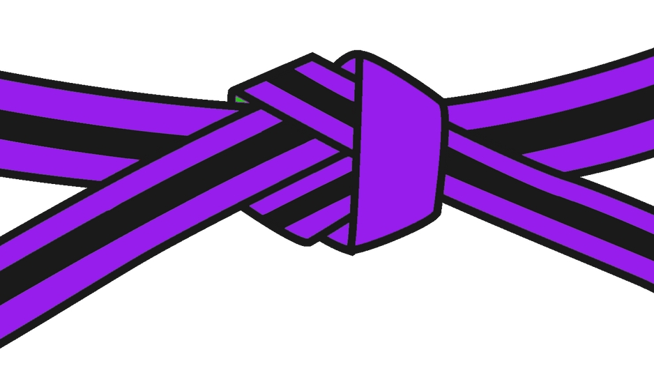 05 Purple Black Stripe