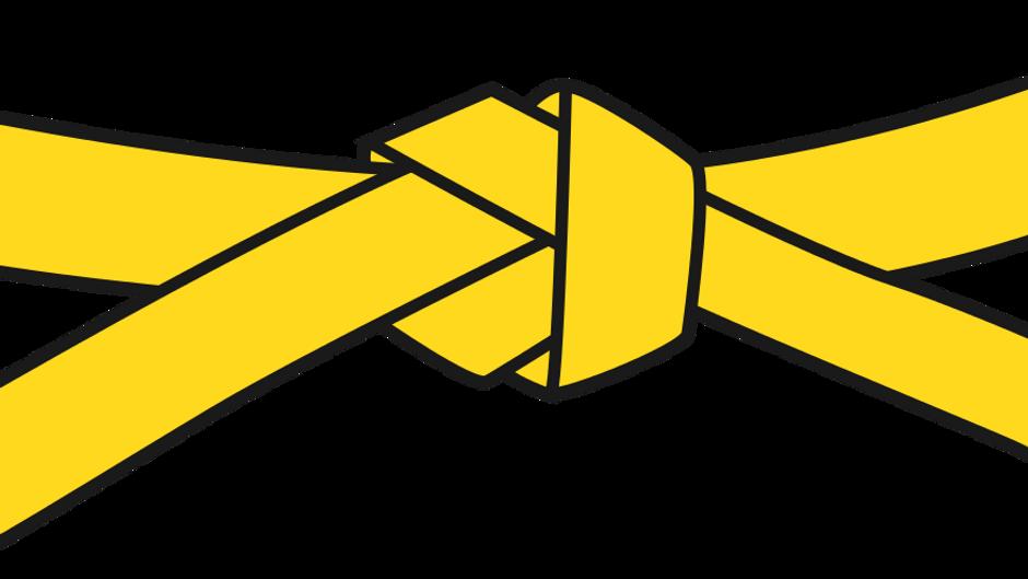 02 Yellow Belt
