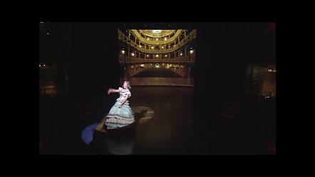 Cornelia David - Warum hab ich so wenig Text