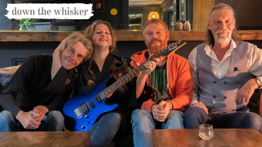 Down The Whisker - Rock and Blues Band