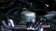 TU1609_PurplePower_BR