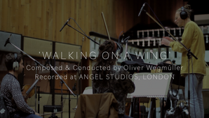 Walking On A Wing | Oliver Wegmüller | Angel Studios