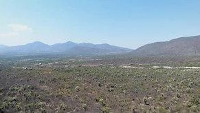 Panoramic views of the Biosphere (Part I) Panorámica de la Biosfera I