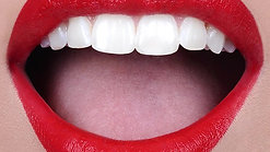 Lip_Palette_Video