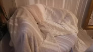 Fluffy Day Bed My Council Flat