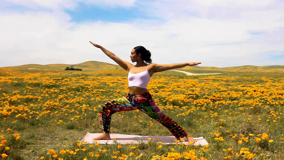TAOY- The Art of Yoga