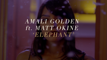 Amali Golden | ELEPHANT (Talk About It) - ft. Matt Okine