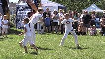 Den Vody 2017 - Capoeira