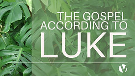 The Gospel According to Luke 1/5/2020