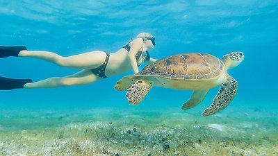 Breathe - Freedive Cayman Island