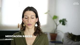 Meditación raíces
