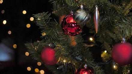 EspaçoSER / Cartão de Natal