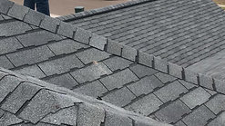 Legend Shingles-Scotchgard Protection