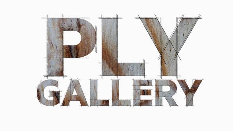 Ply Gallery Artist Talks