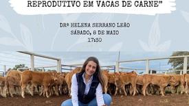 Importância do Controlo Reprodutivo em Vacas de Carne - Drª Helena Serrano Leão