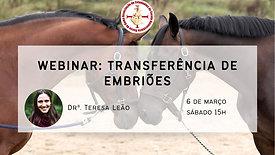 Transferência de Embriões - Drª Teresa Leão