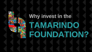 Why Invest in the Tamarindo Foundation?