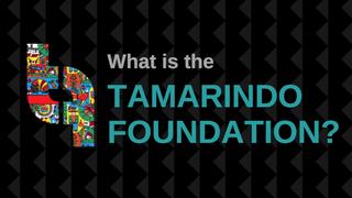 Tamarindo Foundation