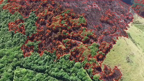 Classification-ForestFireDetection