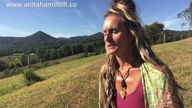 Subscription Sanctuary - Anita Hamilton