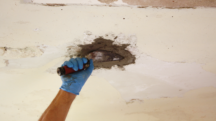Aprende a reparar con Fast Set Repair Mortar.