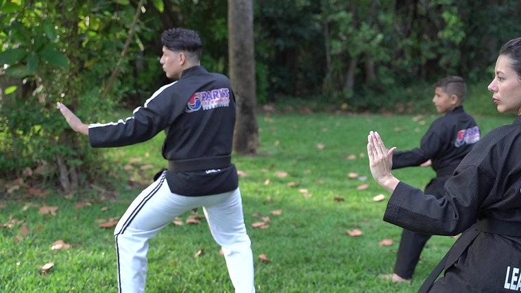 Family Film: Taekwondo