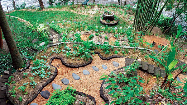 Webinar Taller de Permacultura