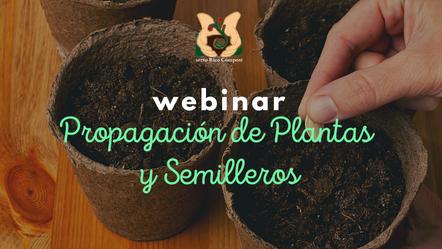 Propagación de planta y semilleros