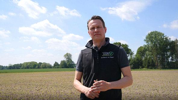 Folge 3: Digitale Feldbegehung Mais