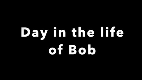 Come meet Bob