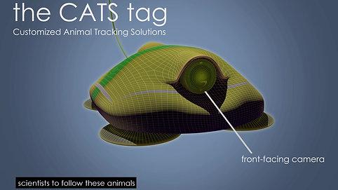 3D Model of CATS Tag