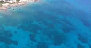 宮古島 モーターパラグライダー タンデムフライト