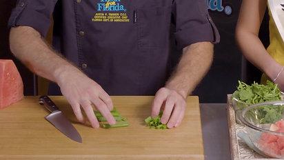 WQ Mozzarella Watermelon Salad (Rev)
