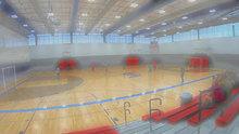 Pro Futsal cut