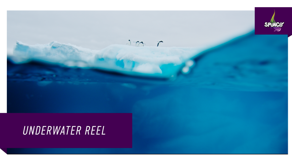 Underwater Reel