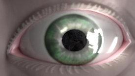 eye shot-VFX breakdown
