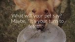 G.O.A.T. Pet Speaker - Promo video