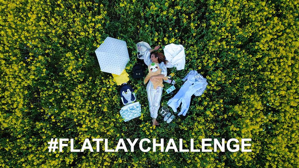 Flat Lay Challenge - How an Instagram Model Travels (ft. Janice Liou)