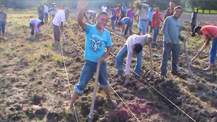 Planting in the fields, August 2014