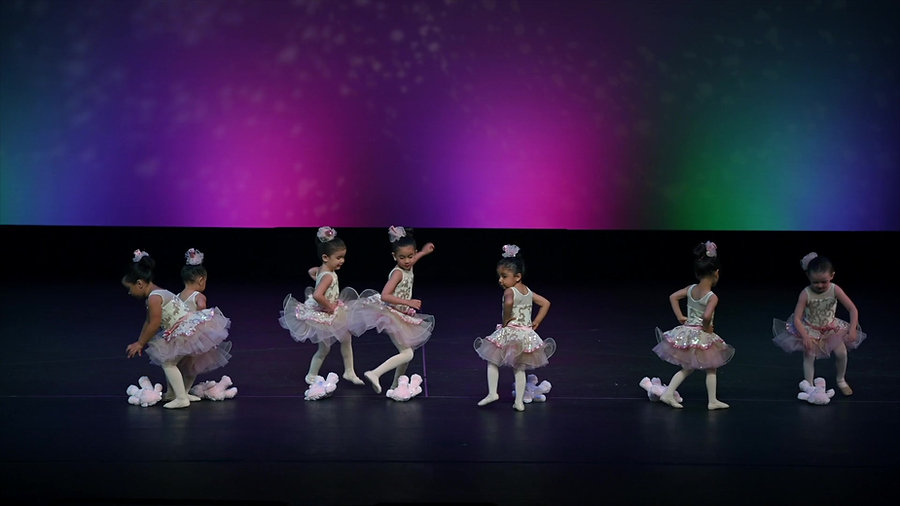 The Dance Center Video Gallery