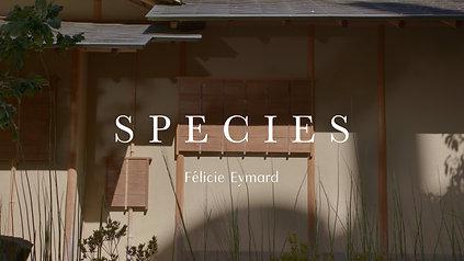 Species - Félicie Eymard