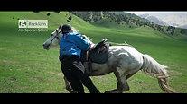 Bursa Büyükşehir Belediyesi Ata Sporları Şöleni