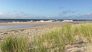 Beach Hampton