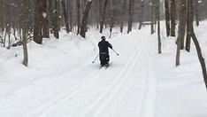 Paranordic Skiing